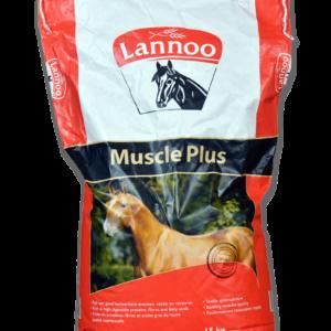 Muscle Plus Pferdefutter